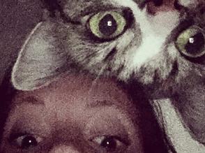 Kat hjælper mod angst